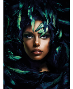 glass-art en alu-art 2040537